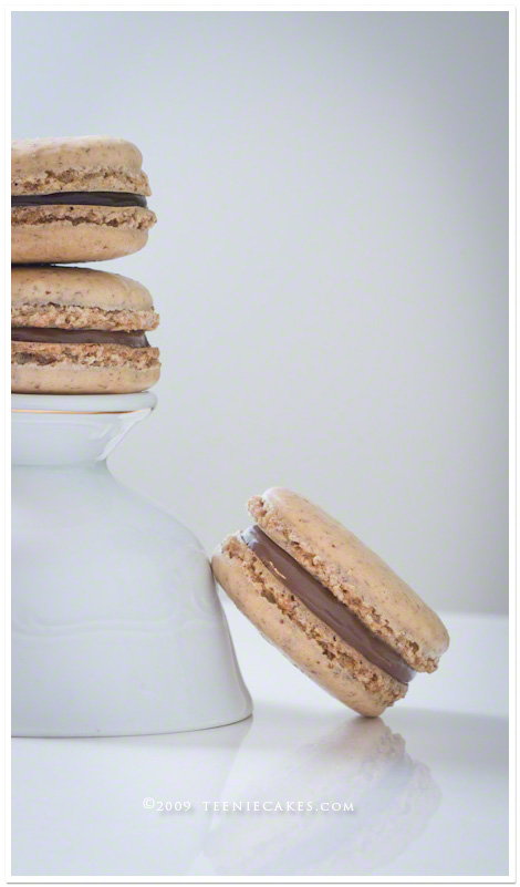 Parisian Macarons on TeenieCakes.com