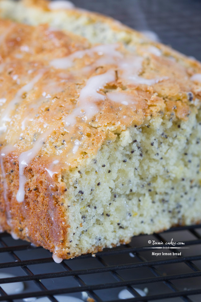 Meyer Lemon Bread recipe | TeenieCakes.com