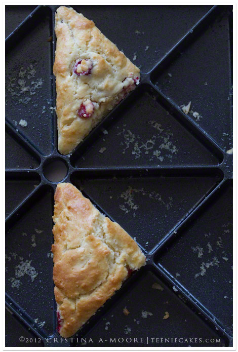Meyer Lemon and Cranberry Scones recipe | TeenieCakes.com