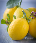 Nature's Gifts:  Meyer Lemons