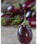 Nature's Gifts: Aubergine - Baby Eggplant
