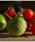 Nature's Gifts: Garden Tomatoes & Tomatillos