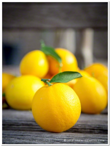 Meyer Lemons - photography | TeenieCakes.com