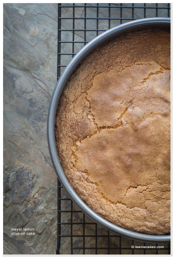 Meyer Lemon Olive Oil Cake - Pan: recipe | TeenieCakes.com