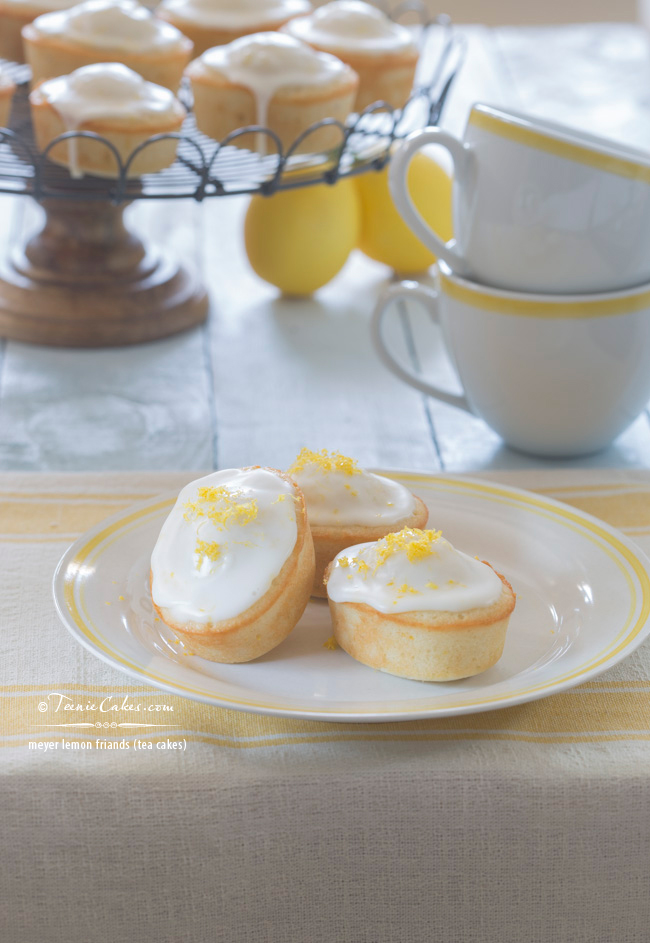meyer lemon friands (tea cakes) & lemon cakes for sansa stark