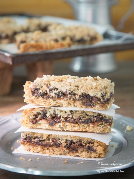 Fig and Chocolate Oat Bars