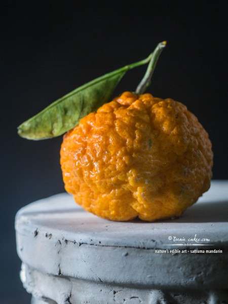 Nature's Edible Art - Satsuma Mandarin