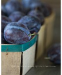 Italian Plums photography by Cristina A-Moore for TeenieCakes.com