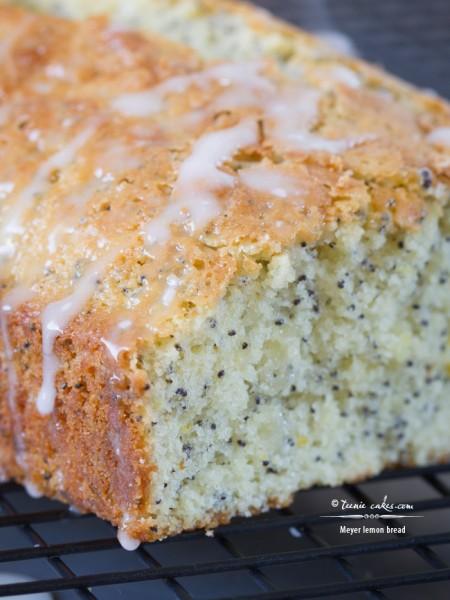 Meyer Lemon Bread recipe | TeenieCakes.com