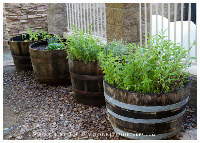 Container Gardening - Recycled Oak Wine Barrels used for herbs