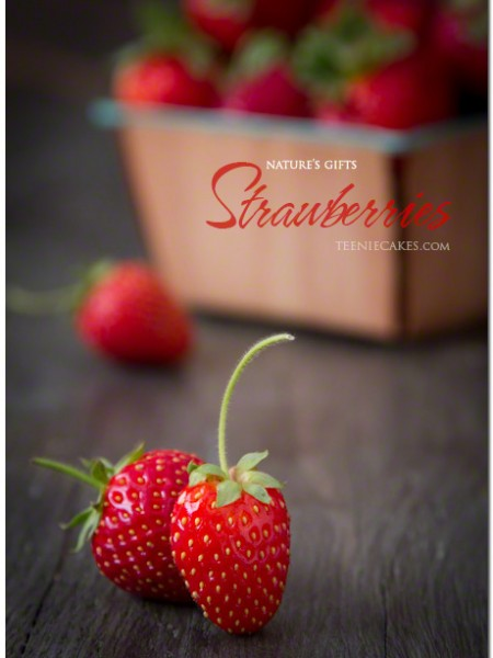 Nature's Gifts: Garden Strawberries photography   Cristina A-Moore for TeenieCakes.com