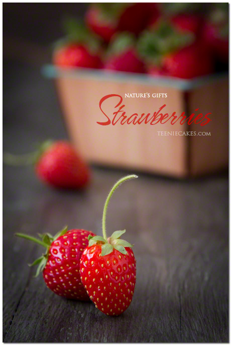 Nature's Gifts:  Garden Strawberries photography | Cristina A-Moore for  TeenieCakes.com
