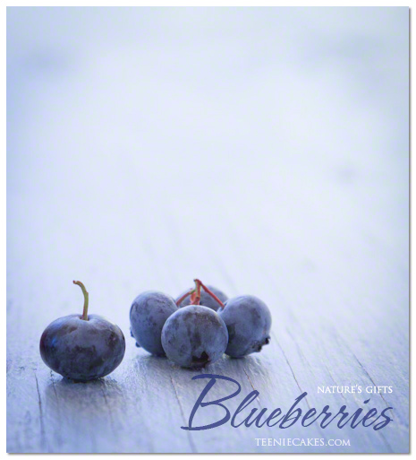 Nature's Gifts: Seasonal Garden Blueberries photography | TeenieCakes.com