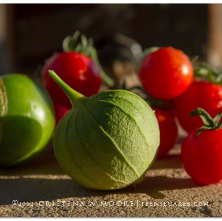 Nature's Gifts: Garden Tomatoes & Tomatillos photography | TeenieCakes.com