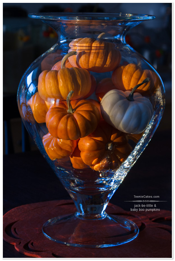 Mini Pumpkins - Centerpiece Fall Decor | TeenieCakes.com