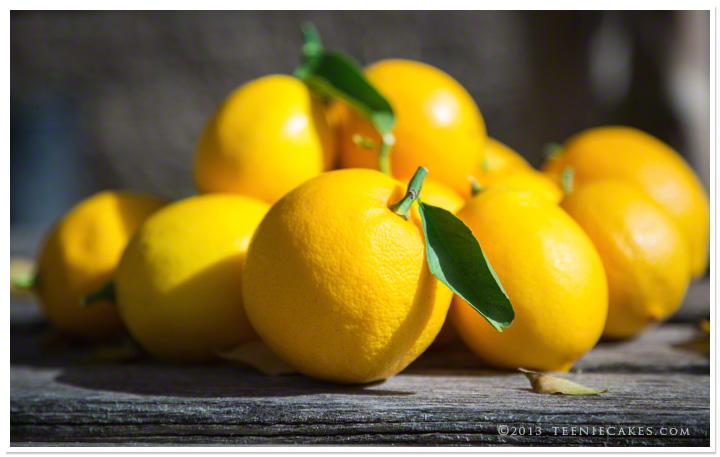Meyer Lemons - photography | TeenieCakes.com