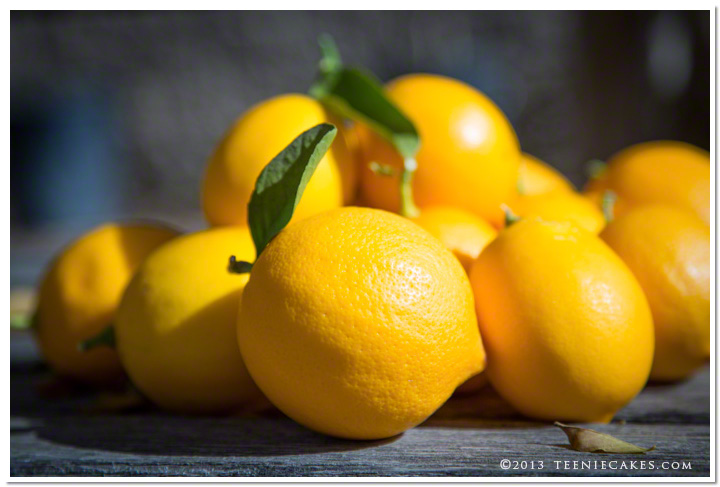 Meyer Lemons photography | TeenieCakes.com