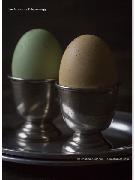 Homage to the Egg - photography   TeenieCakes.comHomage to the Egg   TeenieCakes.com