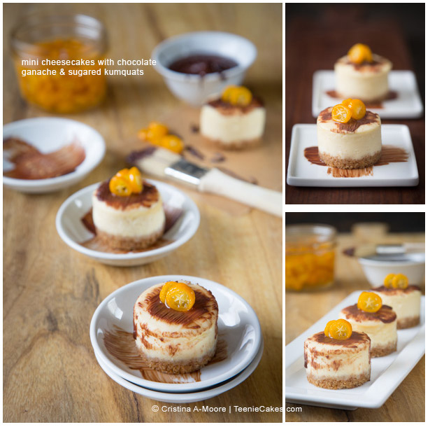 Mini Cheesecakes with chocolate ganache recipe and sugared kumquats recipe | TeenieCakes.com