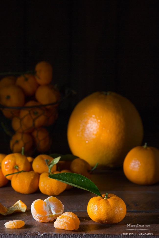 The Kishu Mandarin |Cristina A-Moore Photography for TeenieCakes.com