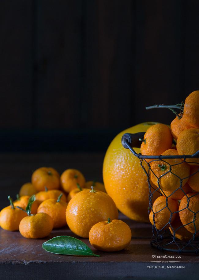 The Kishu Mandarin | Cristina A-Moore Photography for TeenieCakes.com