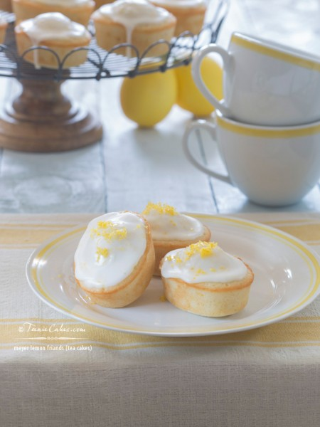 Meyer Lemon Friands - Tea Cakes