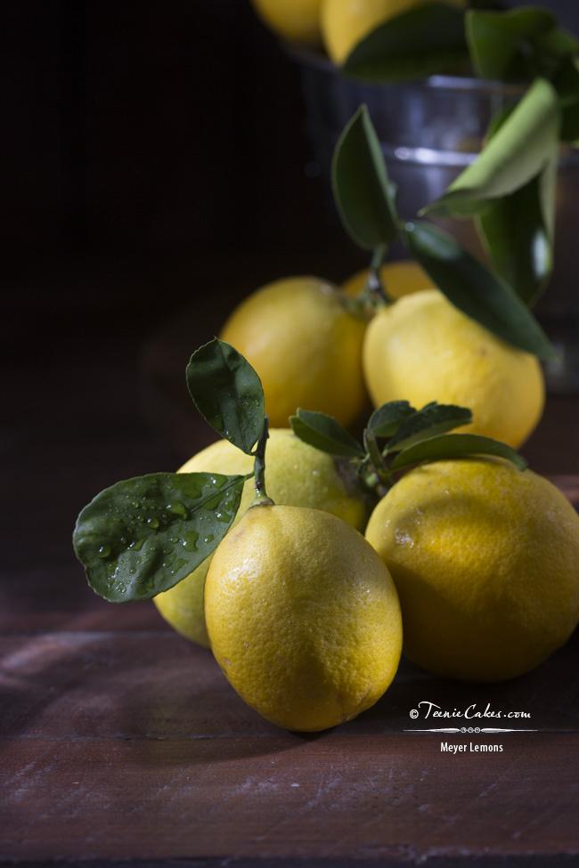 Meyer Lemons - Cristina A-Moore Photography