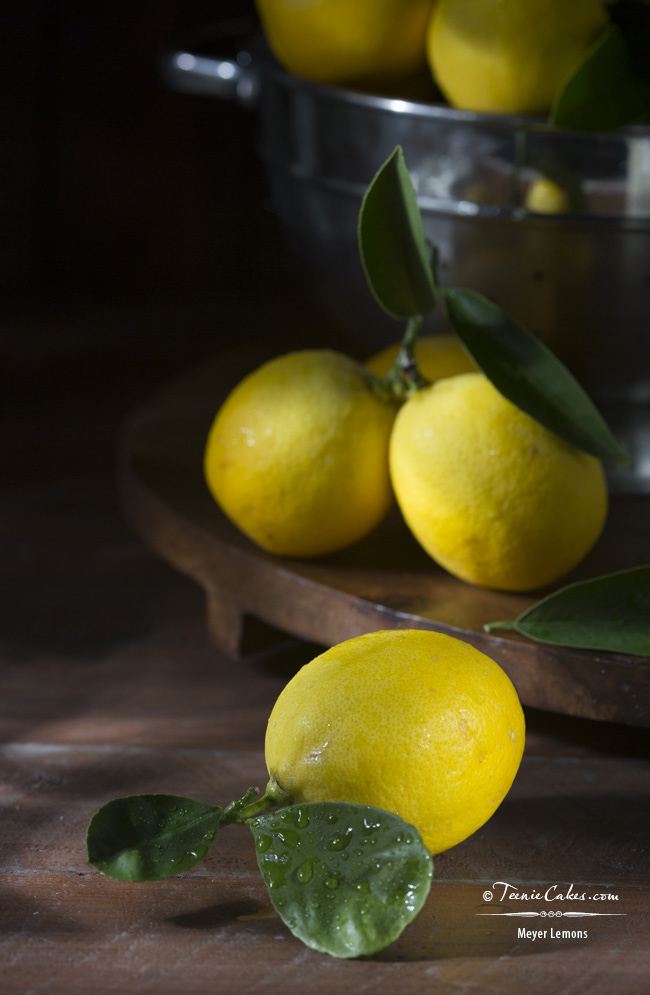 Meyer Lemons - Cristina A-Moore Photoraphy