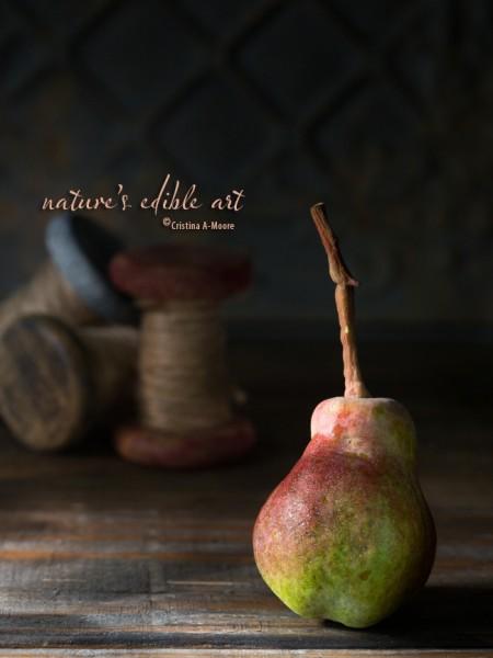 Nature's Edible Art - The Autumn Pear Cristina A-Moore Photography