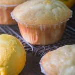 Meyer lemon cream cheese muffins with lemony-sugar glaze recipe