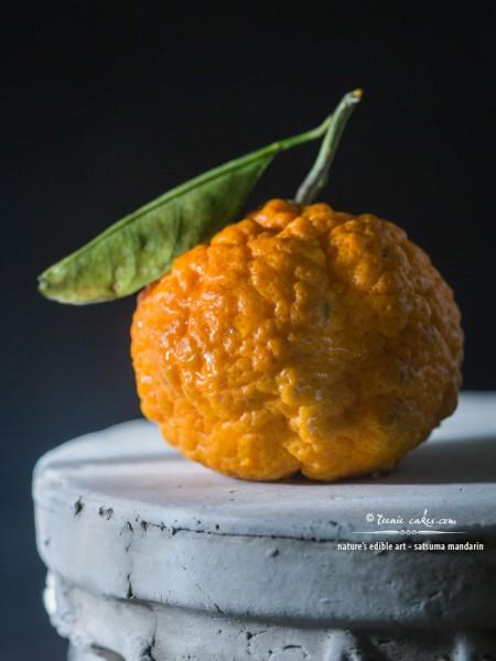 Nature's Edible Art - Satsuma Mandarin