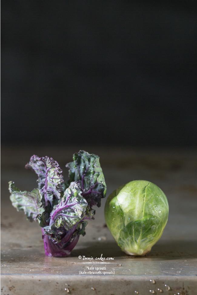 Kale Sprouts - Kalettes - TeenieCakes.com