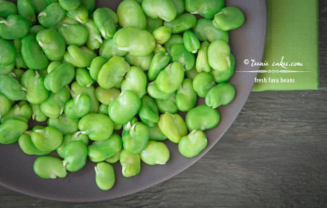 Fresh Fava Beans - TeenieCakes.com